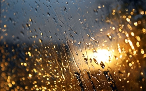 Rain-Drops-Wallpaper